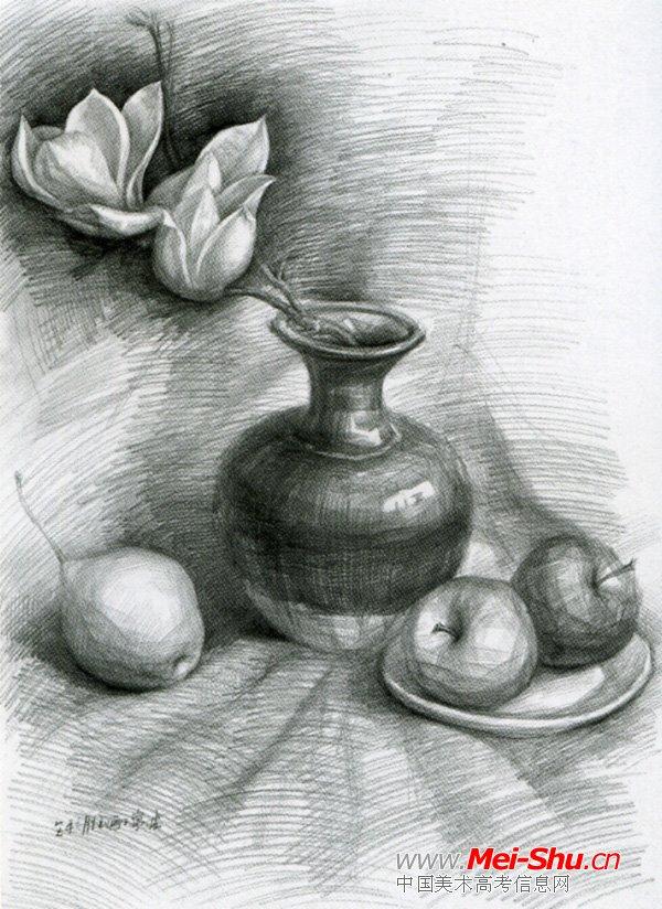 美术高考素描静物示范作品087