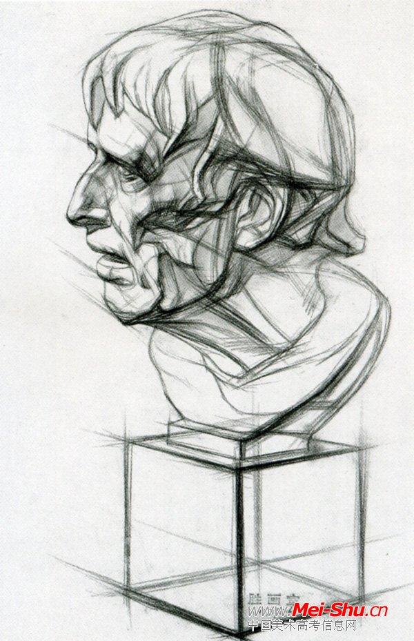 ,石膏像结构素描,素描石膏像名字大全,伏尔泰石膏像素描步骤