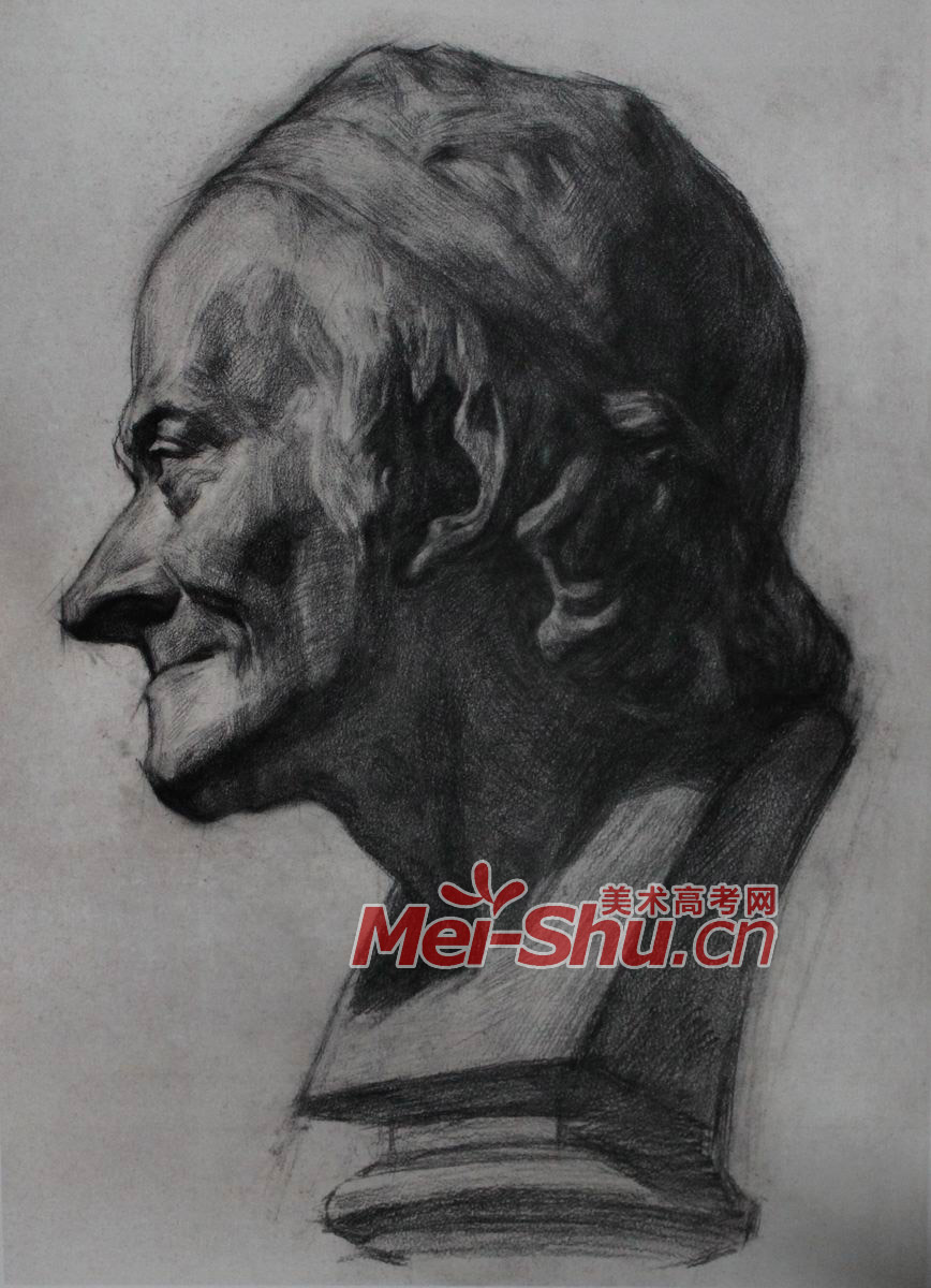 素描石膏头像 伏尔泰,头像写生