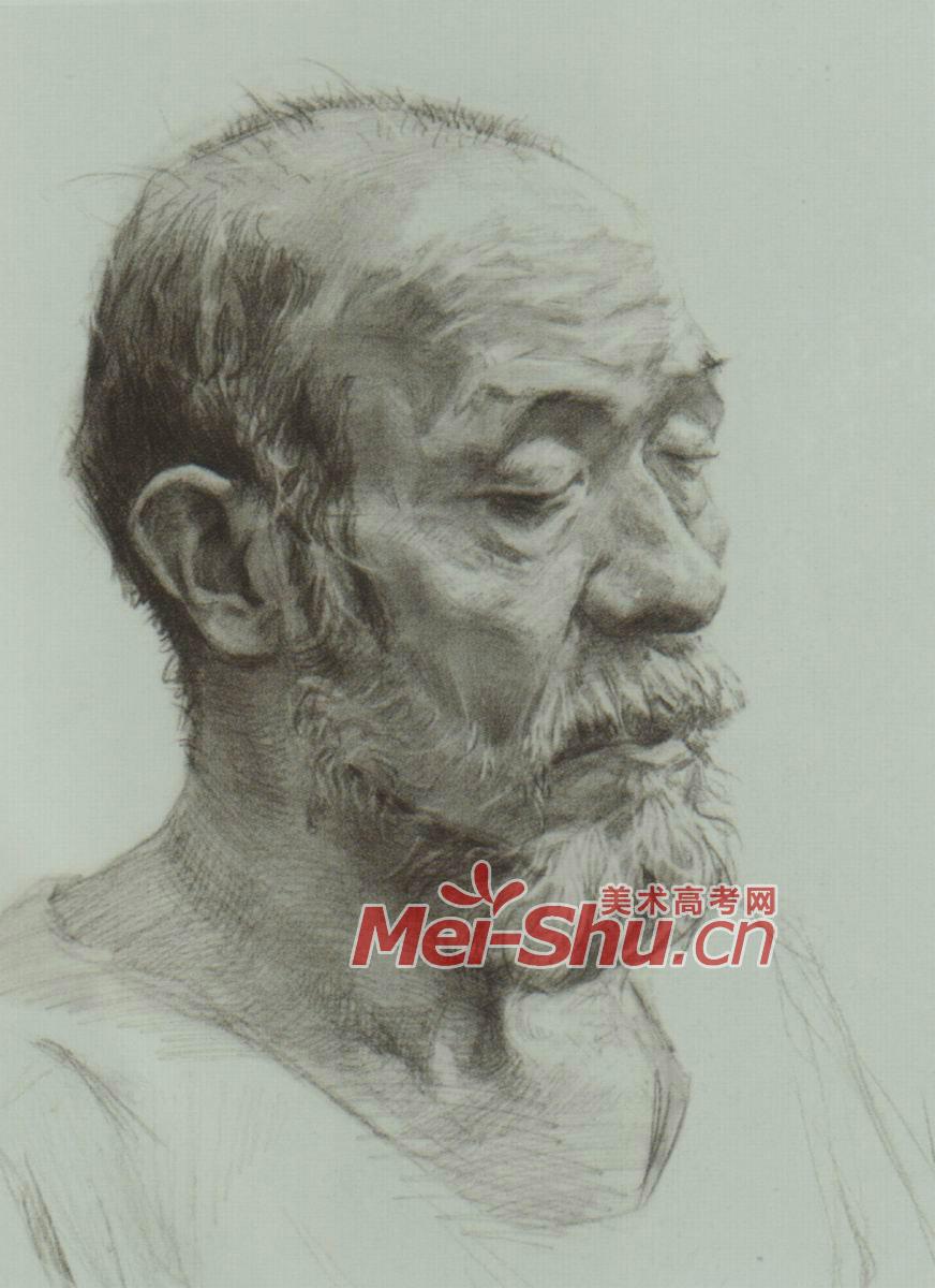 素描人头像老人老年人头像老头白胡子老头儿素描技