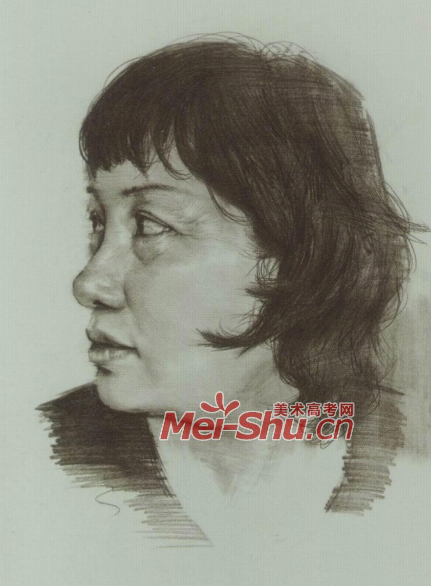 素描头像女青年青年女性卷发正侧面视角侧面视角(2)