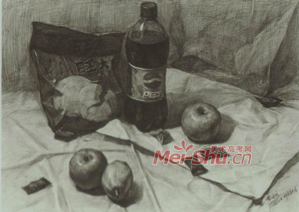 素描静物塑料袋酒罐子可乐瓶啤酒瓶红酒瓶玻璃瓶梨子 5