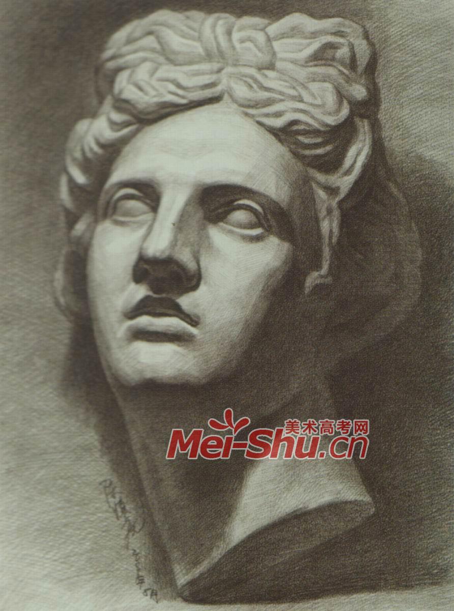 素描石膏像阿波罗石膏头像胸像 2
