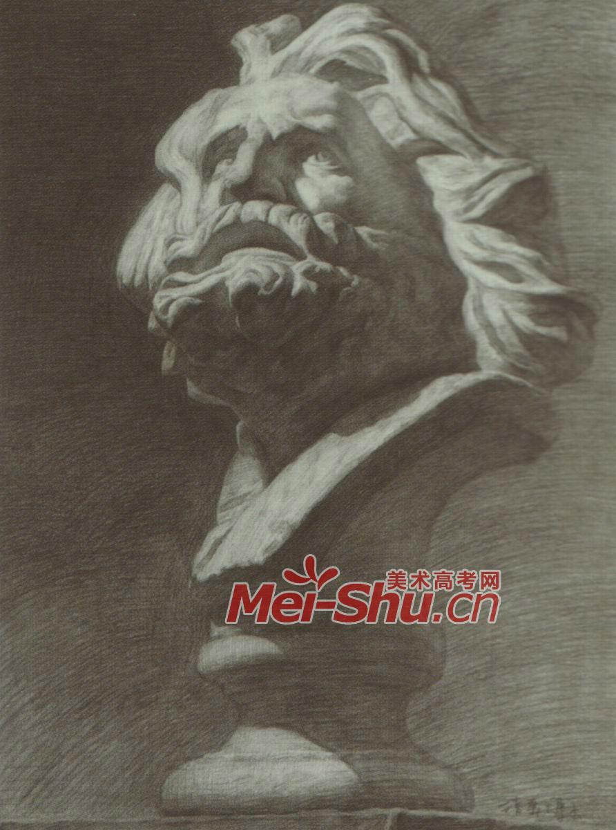 素描石膏体拉奥孔绘画技法侧面光源仰视正面素描头像顺光(6)