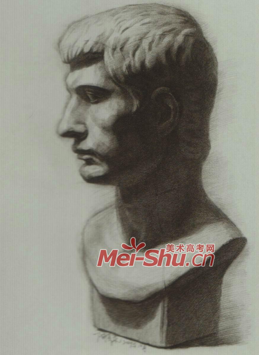 素描石膏像,罗马青年头像,正侧面,四分之三侧,素描石膏体头像(5)